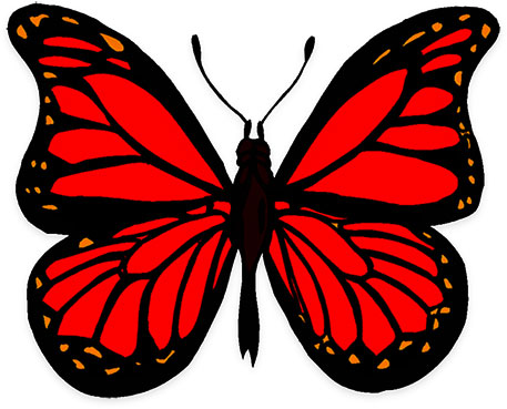 Butterfly Graphics - Animated Butterfly Graphics