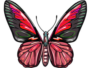 free animated butterfly clipart butterfly gifs graphics rh wilsoninfo com Animated Birds and Butterflies Moving Animated Butterflies