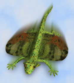 flying lizard backgrounds