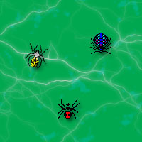 spiders backgrounds