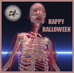 skeleton Happy Halloween