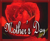 red rose mothers day sign