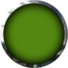 green button with chrome frame